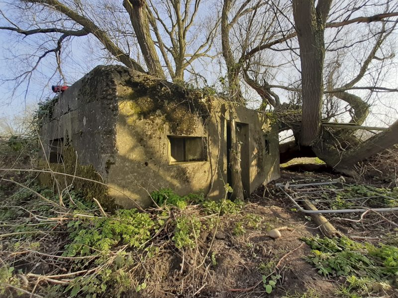 a concrete bunker-like building in the woods
