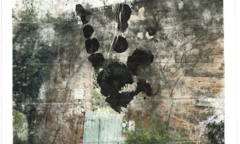 garden wall and ink blot
