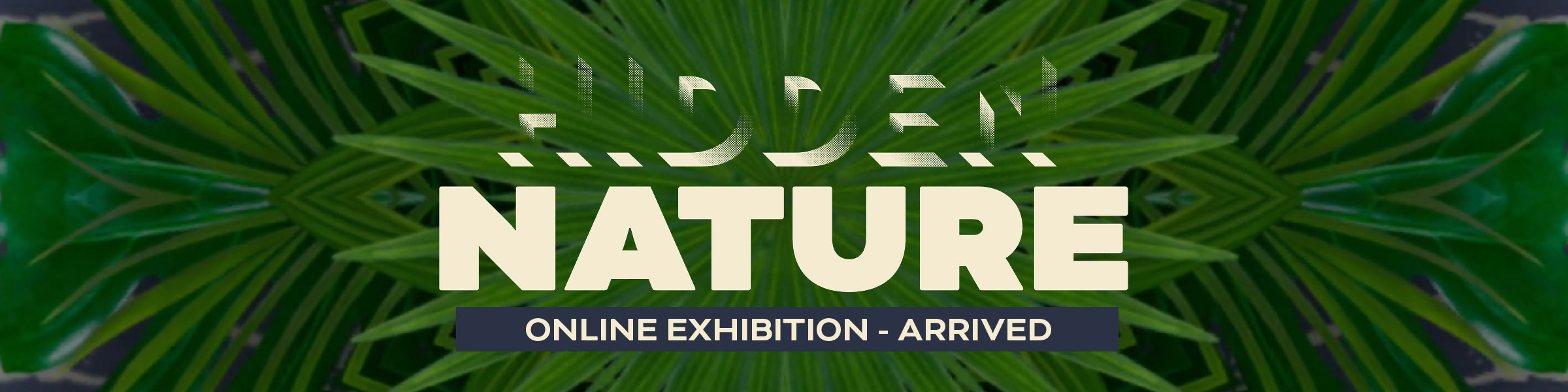 Hidden nature exhibition - open now