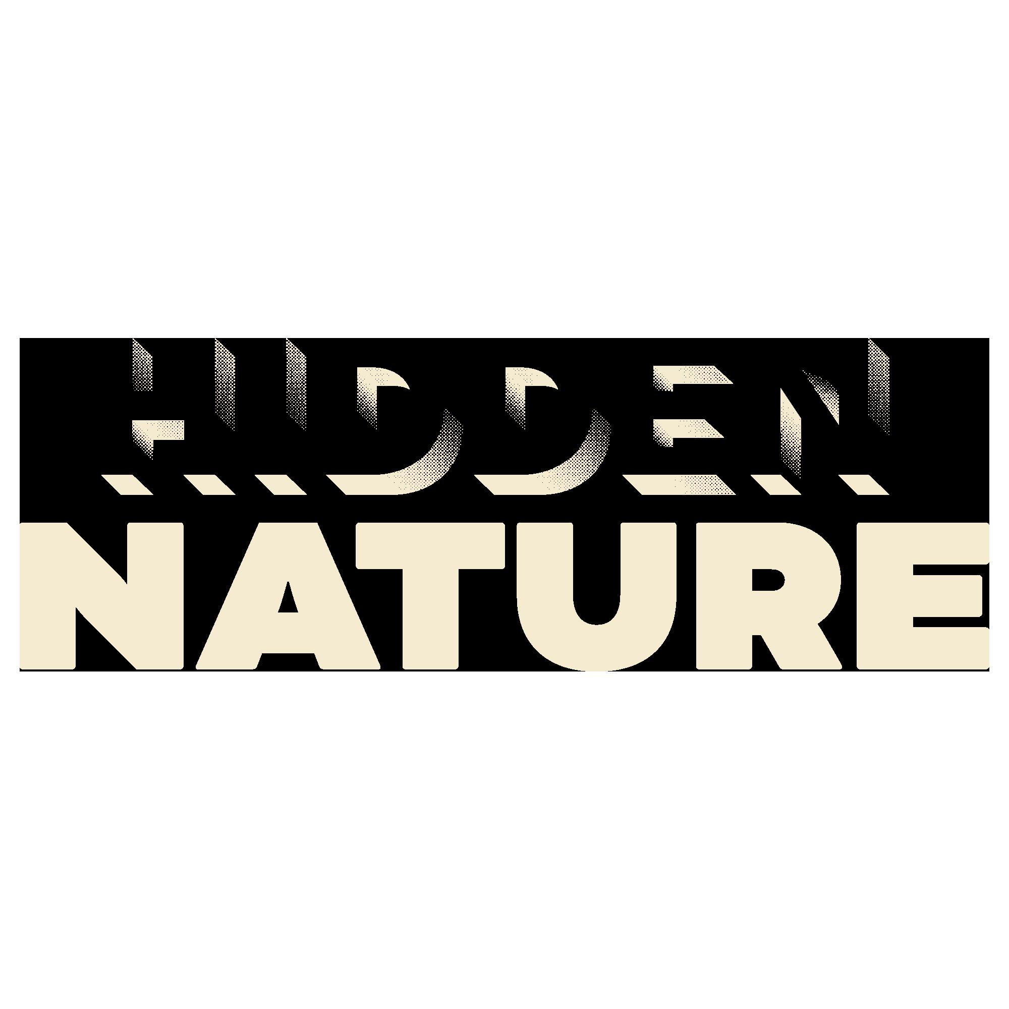 hiddden nature